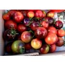 Indigo tomaten